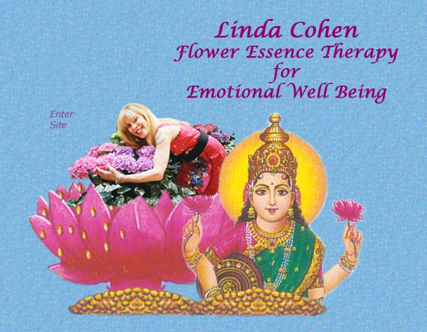 Linda Cohen Flower